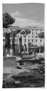 Largo Di Torre - Roma Beach Towel