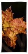 Last Maple Leaf Beach Sheet
