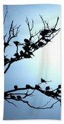 Lasy Birds Beach Towel