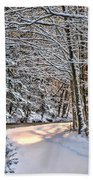 Late Afternoon In The Snow Beach Towel