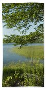 Late Afternoon On Worden Pond Beach Towel