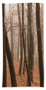 Late Autumn Beech Beach Towel