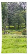 Late Summer By The Pond Beach Towel