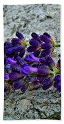 Lavender On White Stone Beach Towel