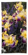 Lavender And Irises Beach Towel