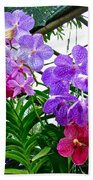Lavender And Red Orchids At Maerim Orchid Farm In Chiang Mai-tha Beach Towel