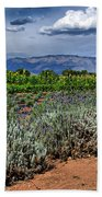 Lavender And Sunflowers Beach Towel