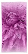 Lavender Beauty Beach Towel