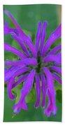 Lavender Bloom Beach Towel