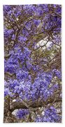 Lavender-colored Tree Blossoms Beach Towel
