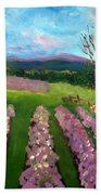Lavender Fields Beach Sheet