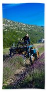 Lavender Harvest In Provence Beach Towel