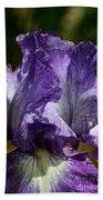 Lavender Lust Beach Towel