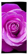 Lavender Rose Beach Towel