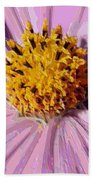 Layers Of A Cosmos Flower Beach Sheet