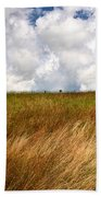 Leaden Clouds Over Field Beach Towel
