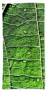 Leaf Abstract - Macro Photography Beach Towel