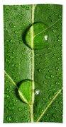 Leaf Dew Drop Number 10 Beach Towel