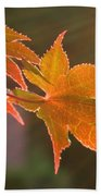 Leaf In The Sun Beach Towel