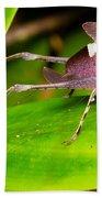 Leaf Katydid Beach Towel