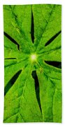 Leaf Macro Beach Towel
