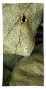 Leafpile 2 Beach Towel