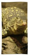 Leapin Lizards Beach Towel