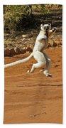 Leaping Lemur Beach Towel