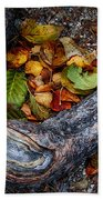 Leaves And Root Beach Towel