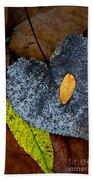 Leaves At Oak Openings Beach Towel
