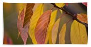 Leaves In Fall Beach Towel