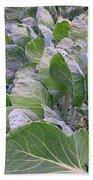 Leaves Of Green Beach Towel