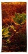 Leaves On Texture Beach Towel