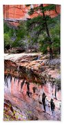 Ledge At Emerald Pools In Zion National Park Beach Towel