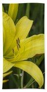 Lemon Yellow Daylily Blossom Beach Towel