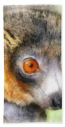 Lemur 004 Beach Towel