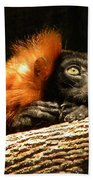 Lemur In Longing Beach Towel