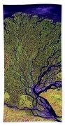 Lena River Delta Beach Towel by Adam Romanowicz