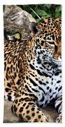 Leopard At Rest Beach Sheet