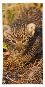 Leopard Cub Beach Towel