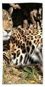 Leopard Beach Towel