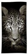 Leopard Portrait In The Dark Beach Towel