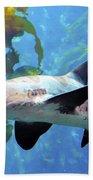 Leopard Shark Beach Towel