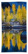 Leprechaun Tamaracks Beach Towel