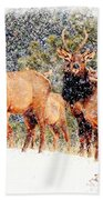 Let It Snow - Barbara Chichester Beach Towel