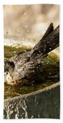 Let The Water Fly Beach Towel