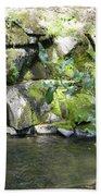 Lewis Creek Trail Beach Towel