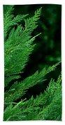 Leyland Cypress Green Beach Towel