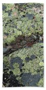 Lichen And Granite Img 6187 Beach Towel