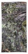 Lichen And Moss Beach Towel